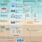 Актуальные данные Рособрнадзора о ЕГЭ представлены в инфографике